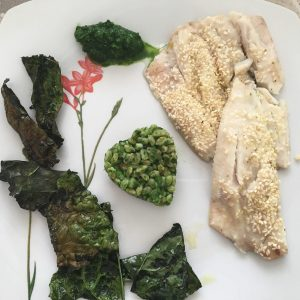 cavolo nere ricette nutrizionista faraone